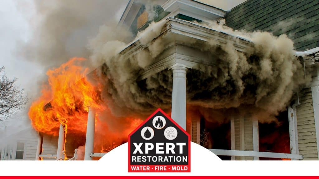 This image has an empty alt attribute; its file name is Xpert-Restoration-16-1024x576.jpg