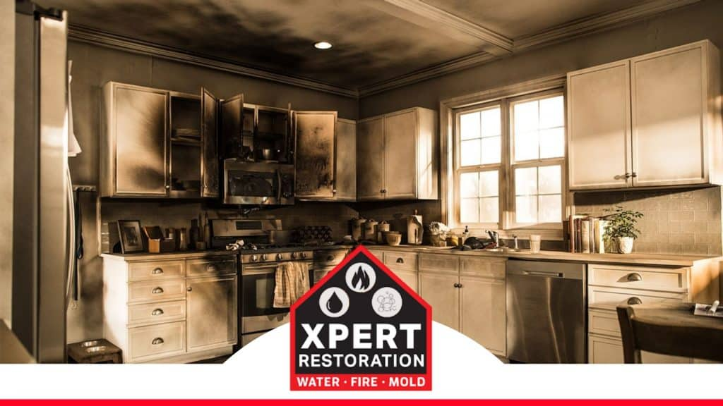 This image has an empty alt attribute; its file name is Xpert-Restoration-7-1024x576.jpg